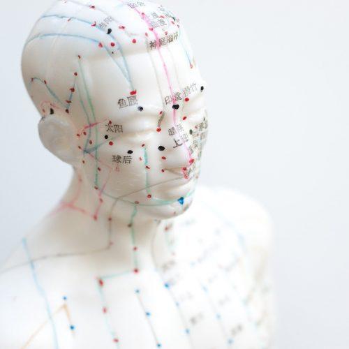 Acupunctuur - meridianen